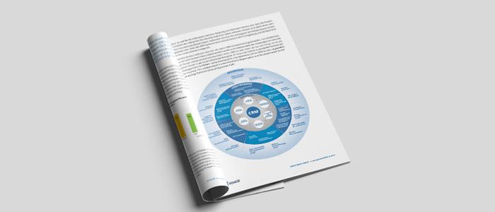 Whitepaper: from good to great: CRM steigert Produktivität im Vertrieb, Autor: Great Sales Force®